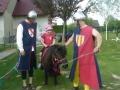 Poníci a rytíři (5)